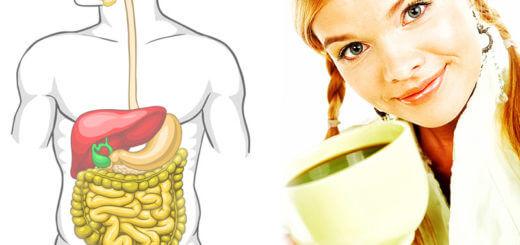 Der Darm - Spiegel des körperlichen Befindens