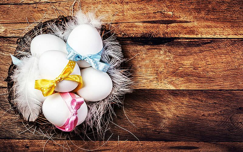 Wie gesund sind Eier?
