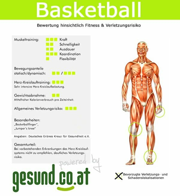 Infografik Basketball