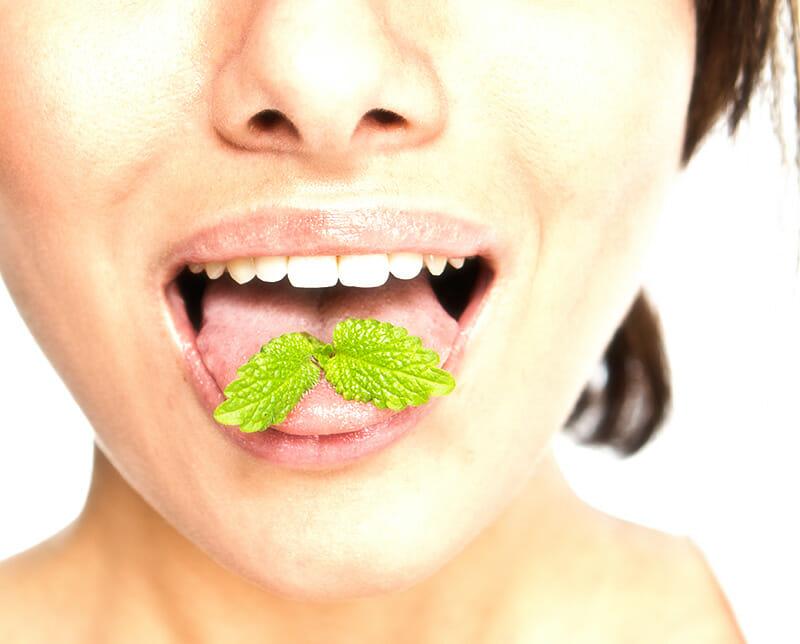 Mit Minze gegen Mundgeruch