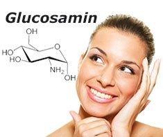 Glucosamin – längeres Leben durch den Einfachzucker?