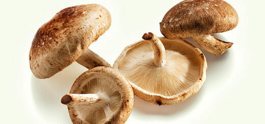 Superfood Shiitake Pilze