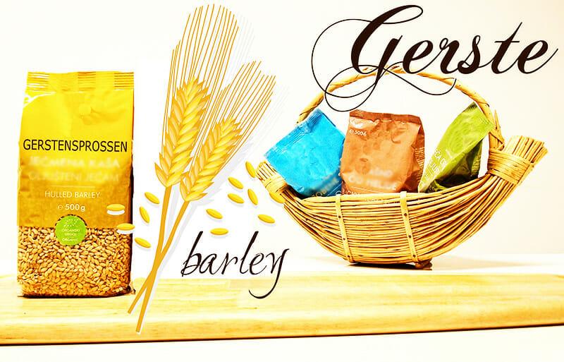 Gerste & Gerstensprossen
