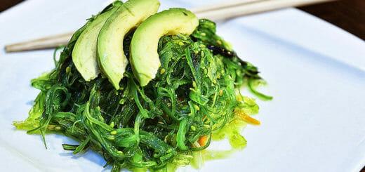 Algen, Insekten & Co. - Nahrungsmittel der Zukunft im Überblick