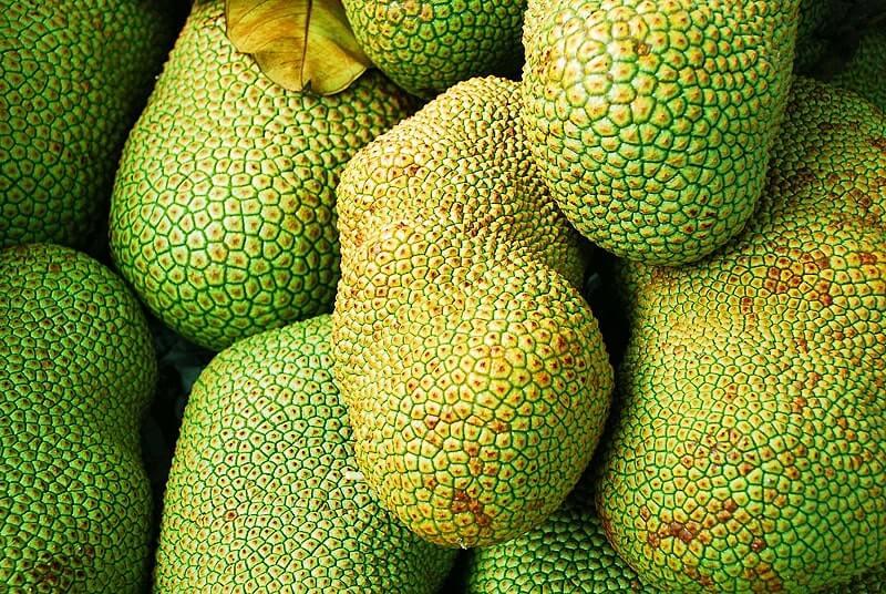 Ganze Jackfruits