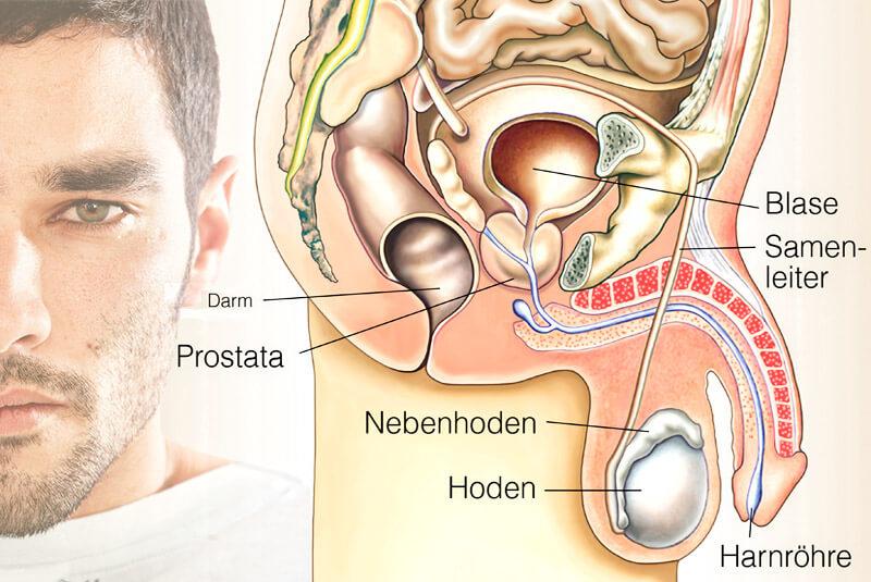 Prostatabeschwerden - noch immer ein Tabu-Thema