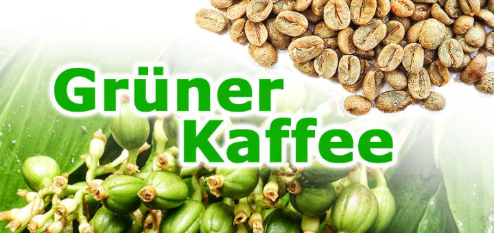 Grüner Kaffee: Geschmack & Wirkung ungerösteter Kaffeebohnen