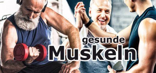 Besitzen Muskeln Heilkraft?