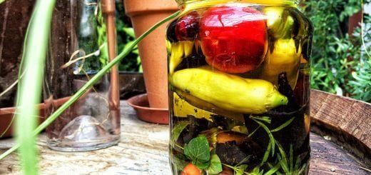 Chilis in Öl einlegen | Rezept