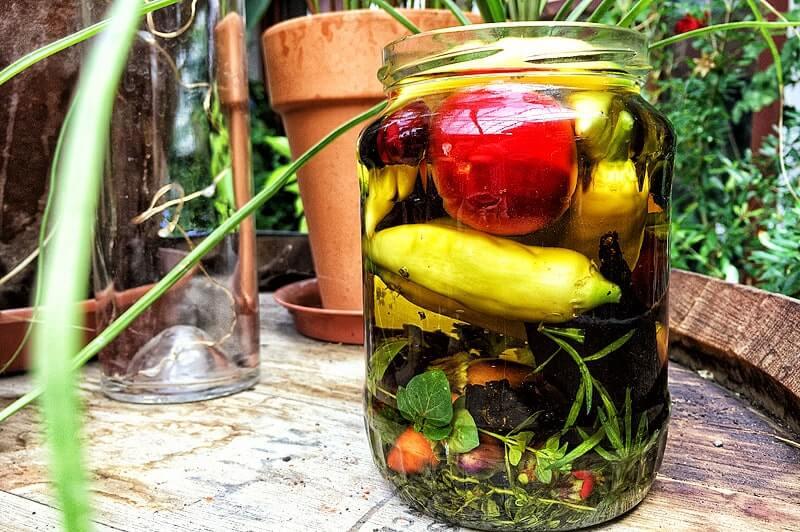 Chilis in Öl einlegen   Rezept
