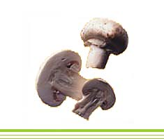 Gefüllte Champignons