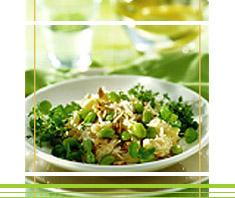 Apfel-Sellerie Salat mit Sojabohnen