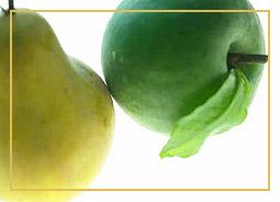Gesunde Kost: Salate, Obst und Gemüse