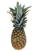 Ananas - süß und fruchtig