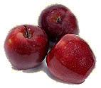 Äpfel - erfrischend und voller Vitamin C