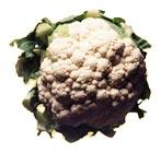 Karfiol (Blumenkohl)