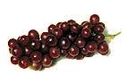 Weintrauben fördern die Verdauung