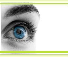das menschliche Auge