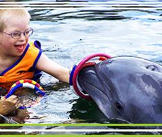 Delfintherapie: Hilfe oder Humbug?