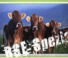 BSE: Furcht vor Rinderwahn auch in anderen Tieren