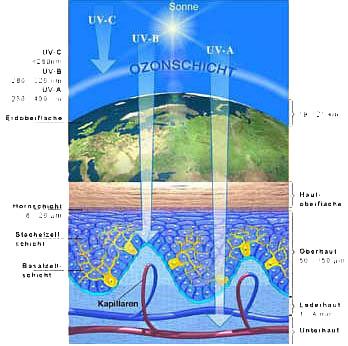 UV-Strahlung; Ansichtsbild Funktionsweise