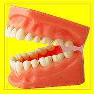 Zähne, Zahnpflege bei Kindern