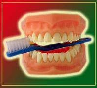 Zahncorner: Informationen von A bis Z rund um das Thema Zähne